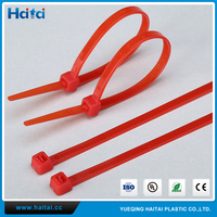 Haitai Professional Organizer CE SGS ROHS High Quality Electrical Accessory Nylon Cable Tie