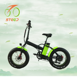 2018 sunny cycle ebike foldable and 36v voltage mini fat e bike 250 watt