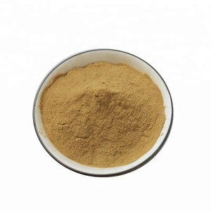 Natural Bitter Kola Nut P.E. Powder Bitter Kola Nut Extract