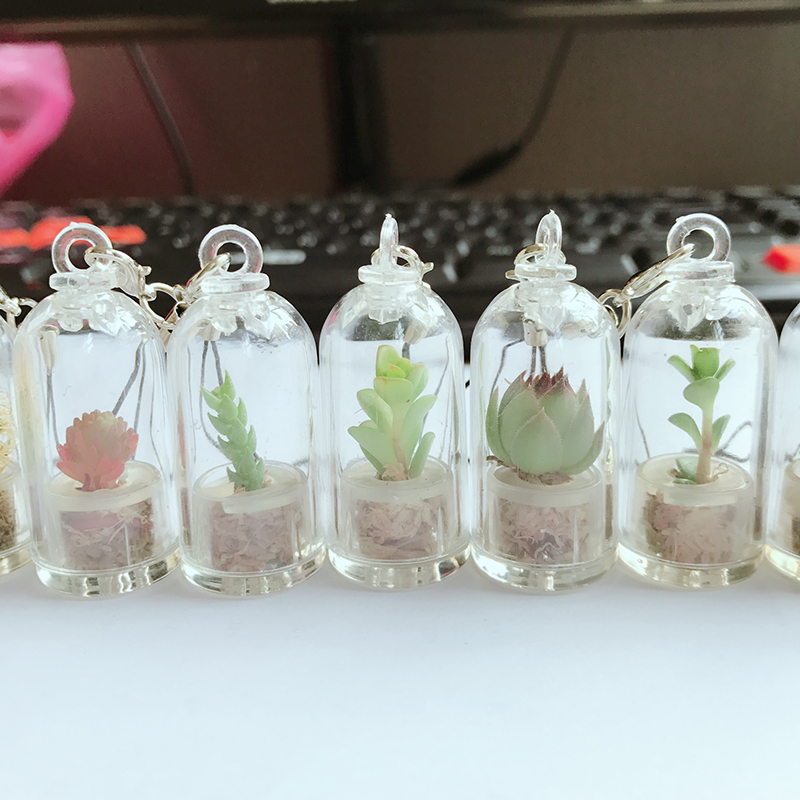 keychain do cacto ornamentos fresh plants micro tree keychain