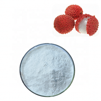 Factory supply Litchi juice powder