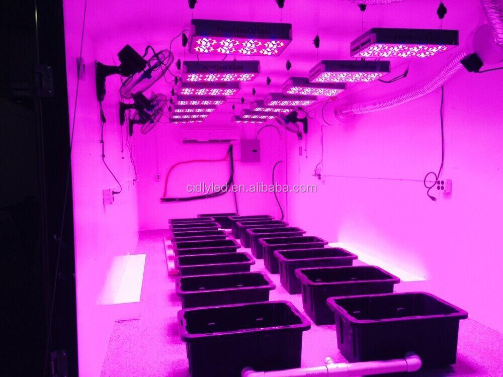 Cidly Apl4 Led Grow Light Indoor Hydroponics Grow Lamp Focos Led ...