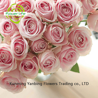2017 Newest Dry Rose Pink Avalache Petals At A Good Price Beautiful