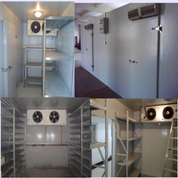 cold room vegetable quick freezing equipment