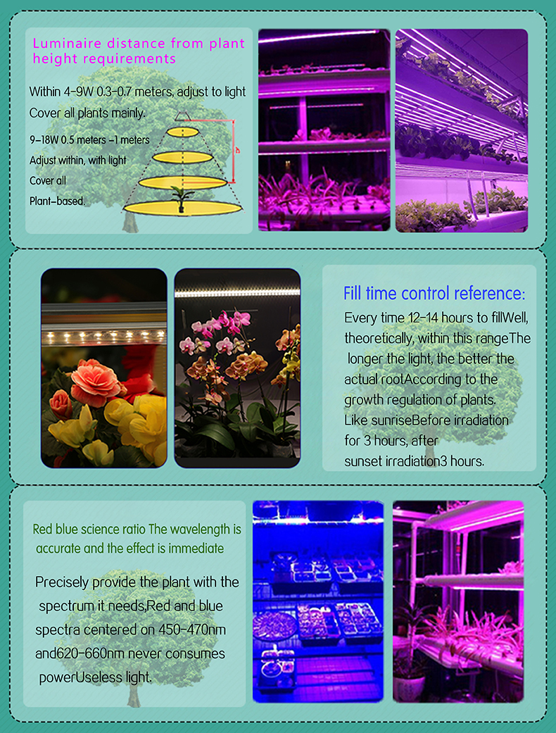 Chinese suppliers IP65 T5 LED Tube Plant Grow Light full spectrum 24w led grow light for agriculture Greenhouse Planting