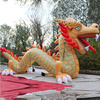 Product Or Wacky Crazy Ideas Inflatable Chinese Dragon King