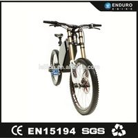 Electric Trial Bike 3000W Enduro Ebike with Light Weight Battery