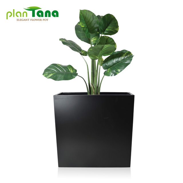 Attractive Awesome Indoor Decorative Planters Contemporary   Amazing Design .