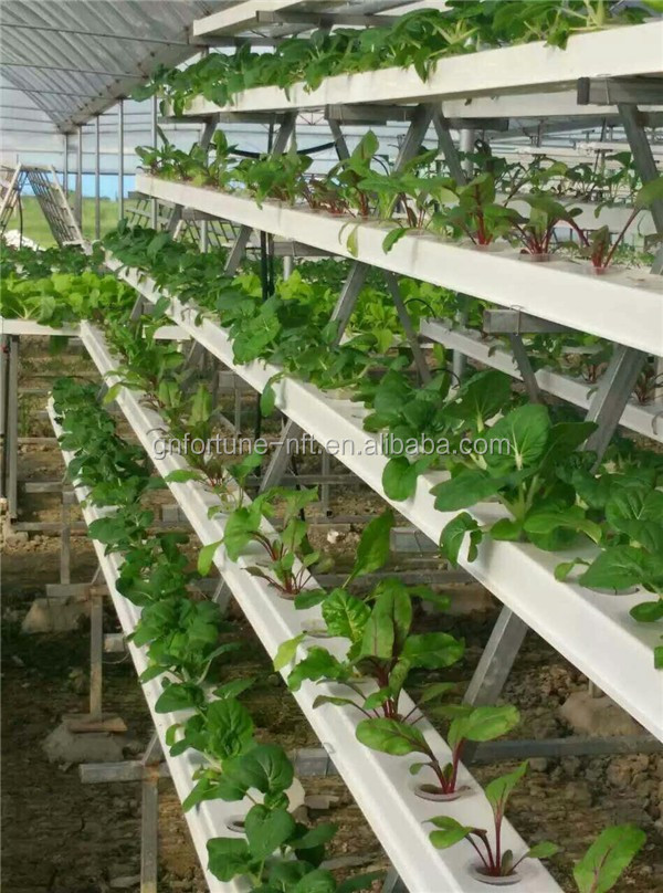100x50mm Gutter Hydroponics Nft Gullies Nft Channel