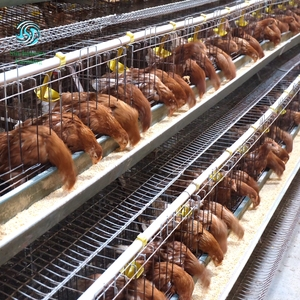 3tiers 4tiers layer chicken egg cage battery cages for chicken farm