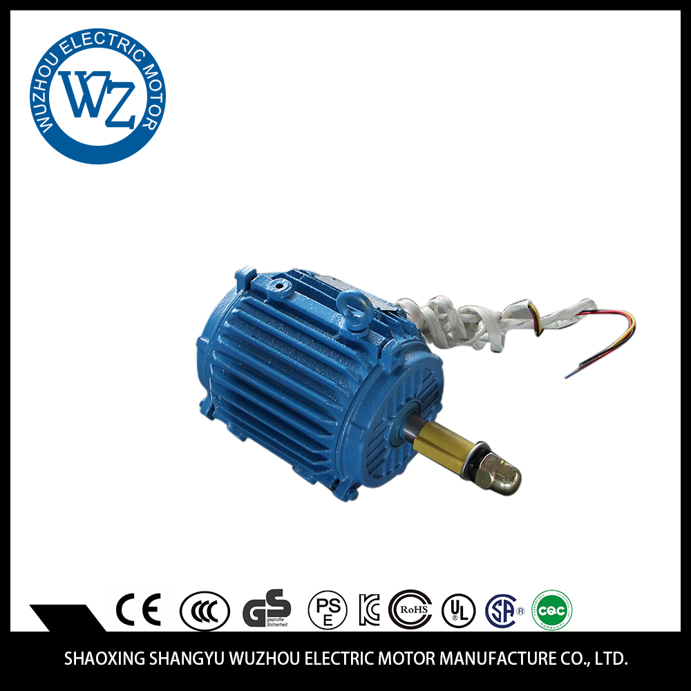 Professional special design Easy to operate asyncronous lifting motor