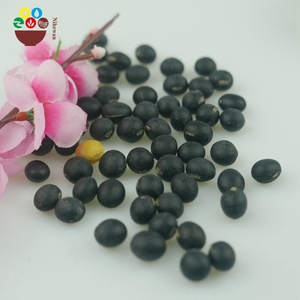 Factory supply 100% natural organic black soybean with good quality