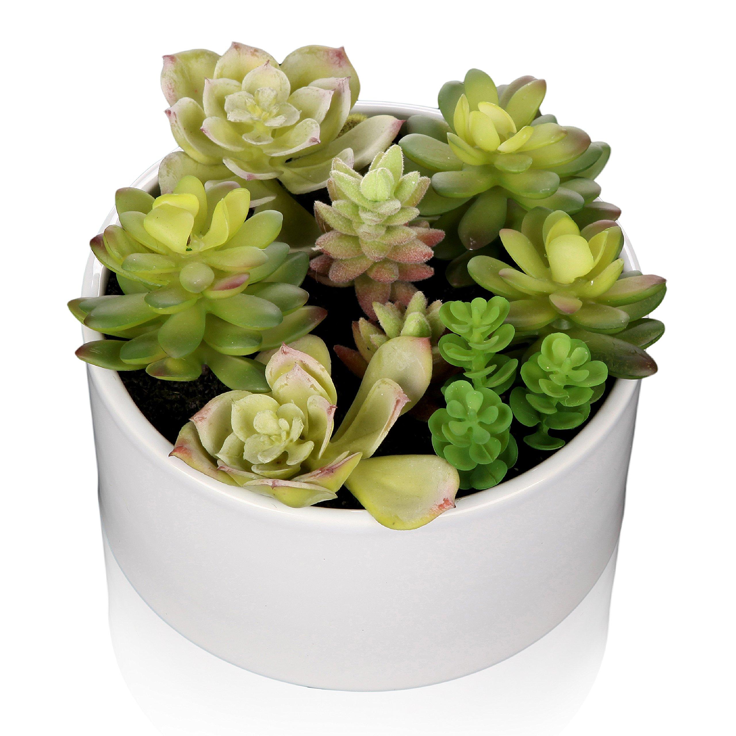 MyGift 6 inch Realistic Artificial Faux Mixed Succulent Plants Arrangement w/ White Round Ceramic Vase