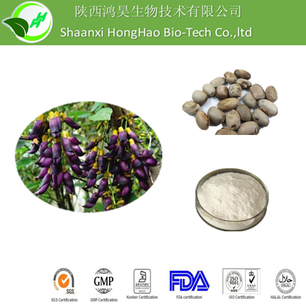 ISO/Kosher Pure Natural white powder 99% L-dopa mucuna pruriens extract