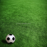 Good Quality Artificial Grass Landscaping Artificial Turf Prices For Soccer, Football, Futsal