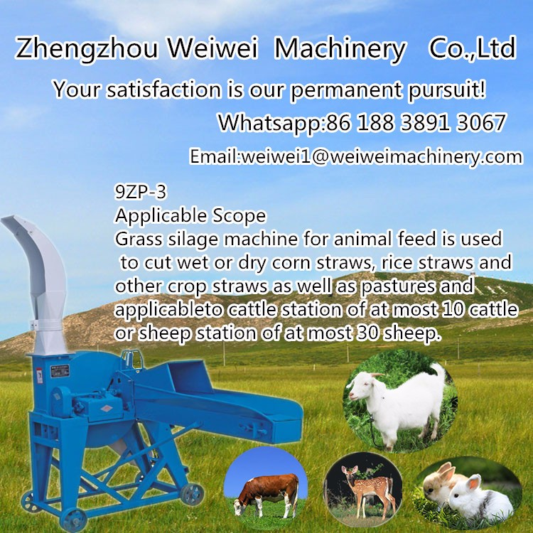 Animal feed using small chaff cutter