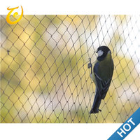 Trade Factory Price New Anti Bird Hunting Net For Fruit Protection