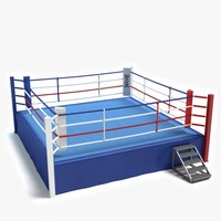customized size floor boxing ring