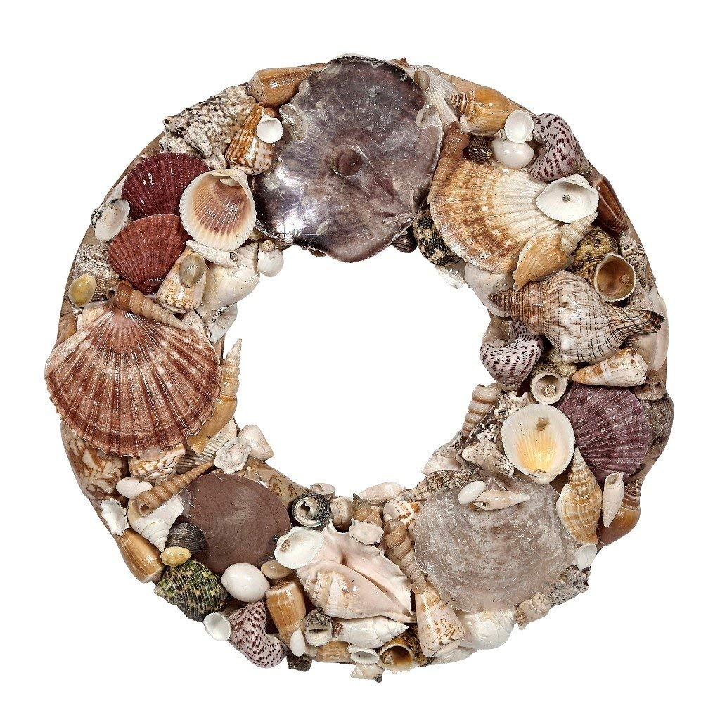 "Assorted Seashells Wreath 14"", Nautical Beach Home Decor, Coastal Decorations, Weddings & more"