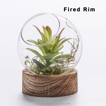 Half Round Glass Wall Planter Wall Air Plant Terrarium With Wood