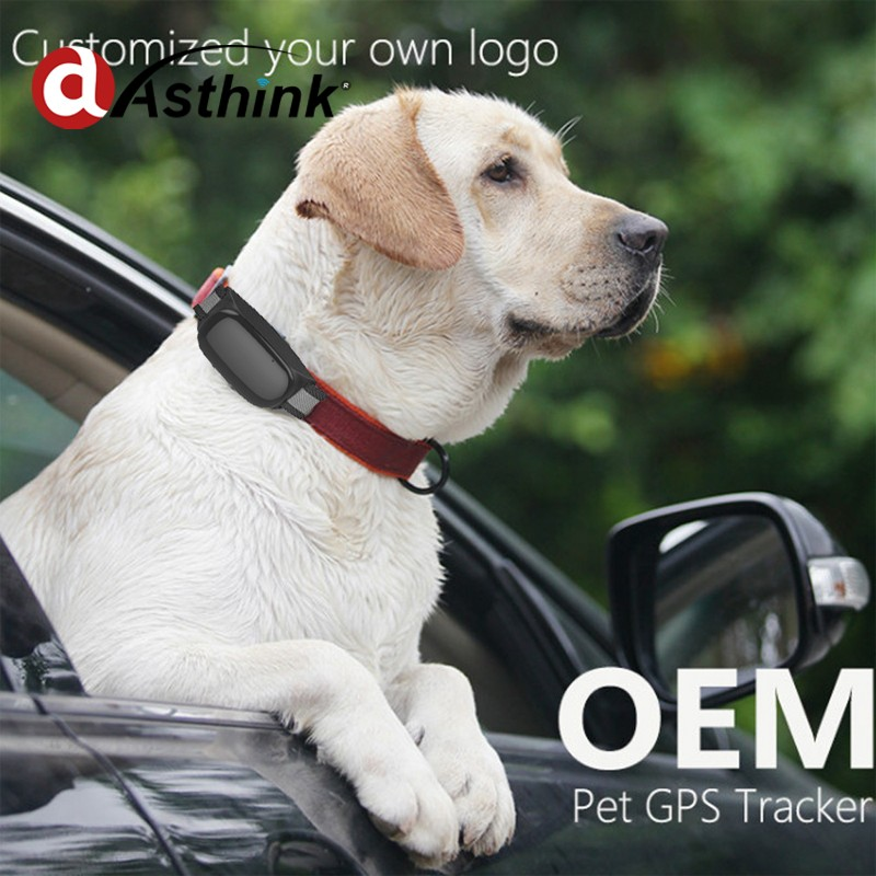 Small Waterproof GSM GPRS Pet Animal Tracker Wireless GPS <strong>Tracking</strong> with Geo-fence and Can Check <strong>Google</strong> Map <strong>on</strong> Cell Phone