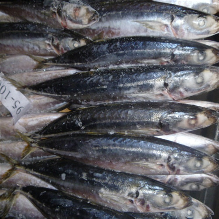 China Fish Buyer, China Fish Buyer Manufacturers and Suppliers on