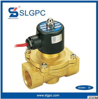 2W Series SLGPC-2W250-25 1 Inch water 24V DC Solenoid Valve