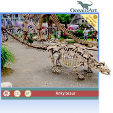 Outdoor museum quality real size fiberglass dinosaur skeleton