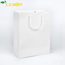 Fashion Style Craft Kraft Shopping Packing Paper Bag