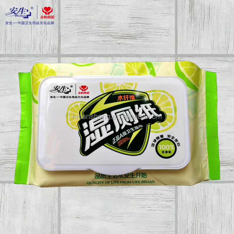 30 PCS Disposable Toilet Cleaning Wet Wipes OEM Welcomed