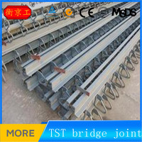 Steel Modular Expansion joint & Bridge steel joint for construction (HOT)