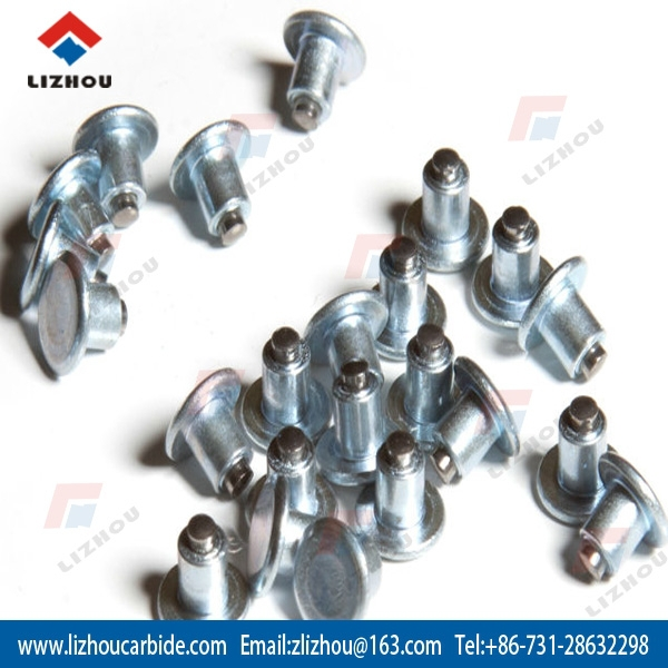 Tungsten Carbide Ice Snow Gripping Tire Studs