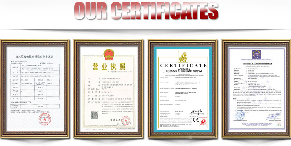 CNRC-018 Best sale Fujitec escalator reversing chain, chain with 609-2RS bearing 17/18/19 sheets