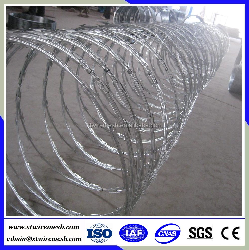 Awesome Triple Strand Concertina Wire Obstacle Photos - Electrical ...