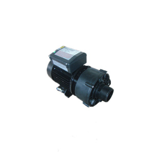 Modern Style High Quality Outdoor Spa Circulation Mini Water Pump