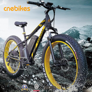 48v 1000w 1500w big power fat tire electric bike/snow ebike/electric beach cruiser bicycle