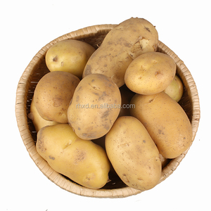 china potato seed potatoes import and export