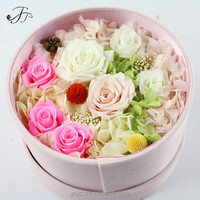Buy Stabilized Flowers Directly from Preserved Stabilized Flowers Factory