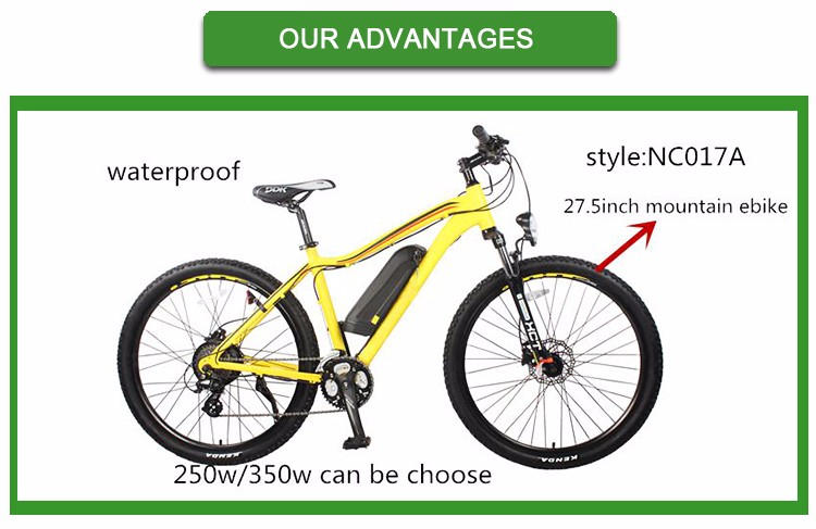 Brand new 3000w ebike made in China