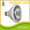 Factory direct sale led par light E27/E26/B22 par30 led 12w 45 degree cob led par30 spot light