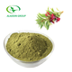GMP hot selling high quality natural organic red henna powder