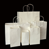 Custom Printed with Twisted Handle Gift/Shopping/Packaging Art Paper Bag
