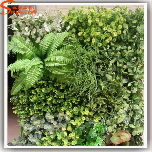 popular different plants according to your needs vertical garden