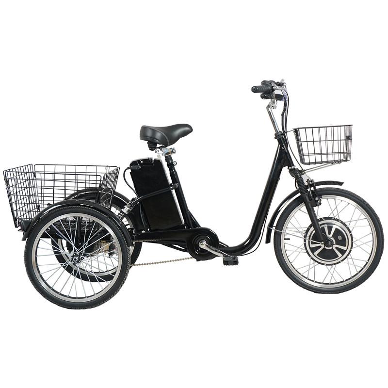 Triciclo eléctrico de carga con batería de 350W 36V 12AH Rickshaw con Pedal asistido