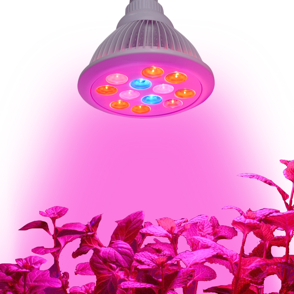 wholesale 36w plant tissue culture led grow light for Hydroponics Indoor Growing