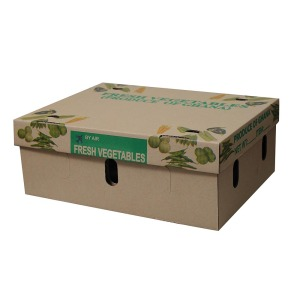 Factory sale clear corrugated fruit cardboard boxes for sale
