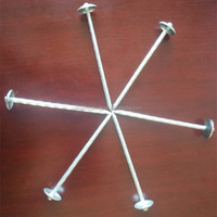 Hot sales galvanized umbrella head roofing nails roofing nails with high quality made in China