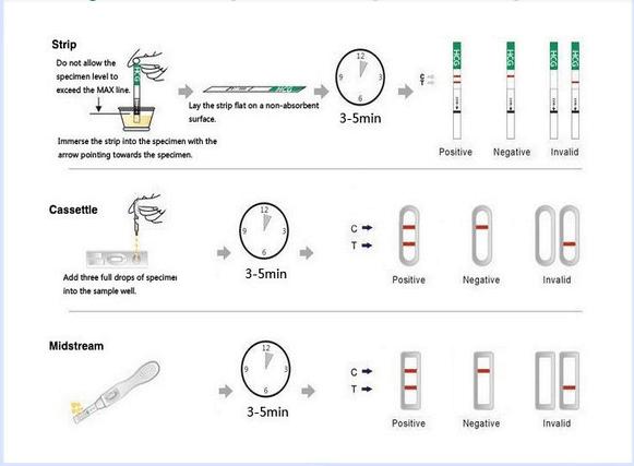 fsh urine test strips jpg 1080x810