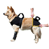 Soft Neoprene Dog Pet Harness