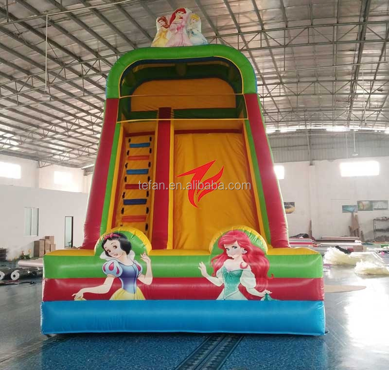 20ft high double lane inflatable turkey slide
